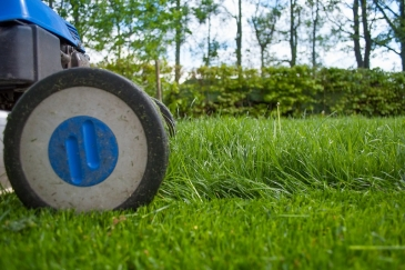 Top 9 Tips for Yard Work Safety