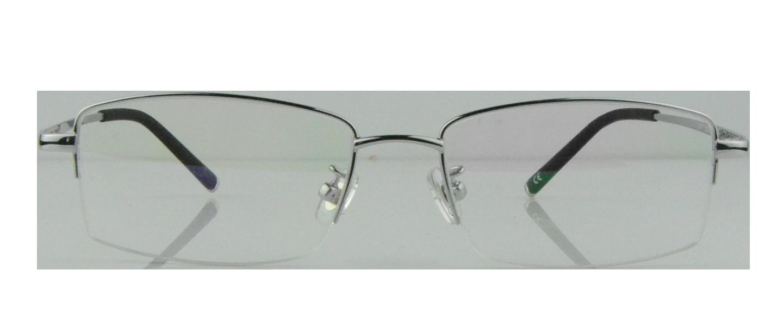 Yannis Titanium Glasses Silver