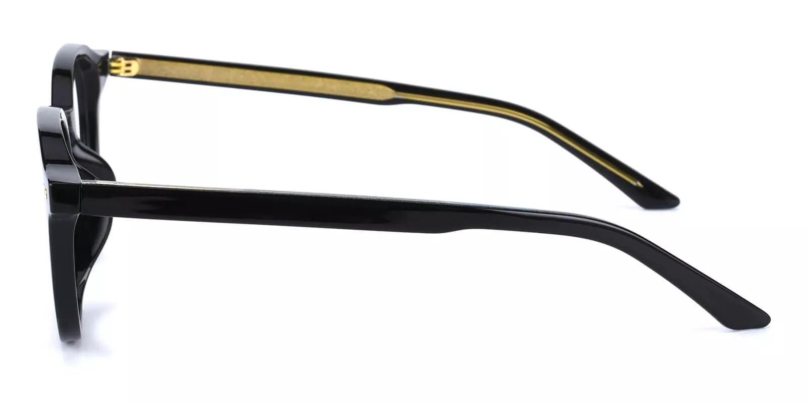 Edison Acetate Eyeglasses Black