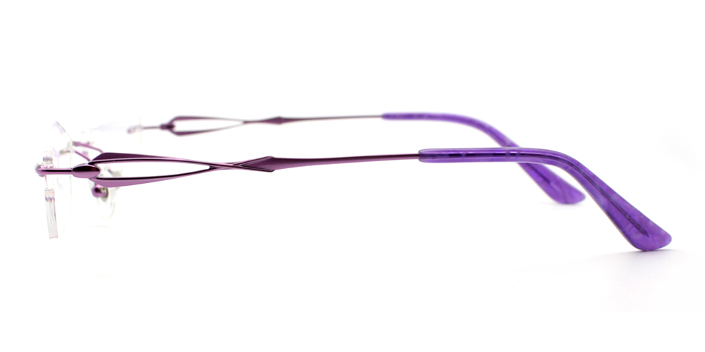 Olivia Titanium Glasses Purple